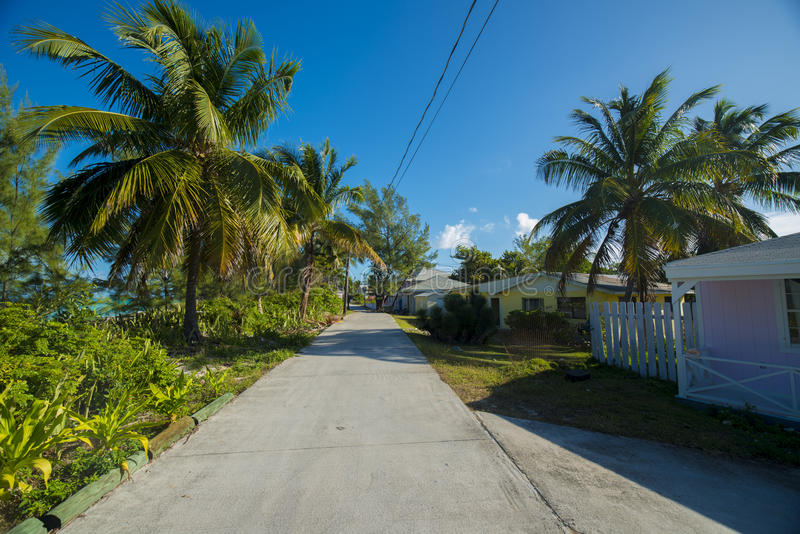 Back roads on the island of Bimini. The island of Bimini Bahamas narrow roads lined with palm trees and small homes stock photography