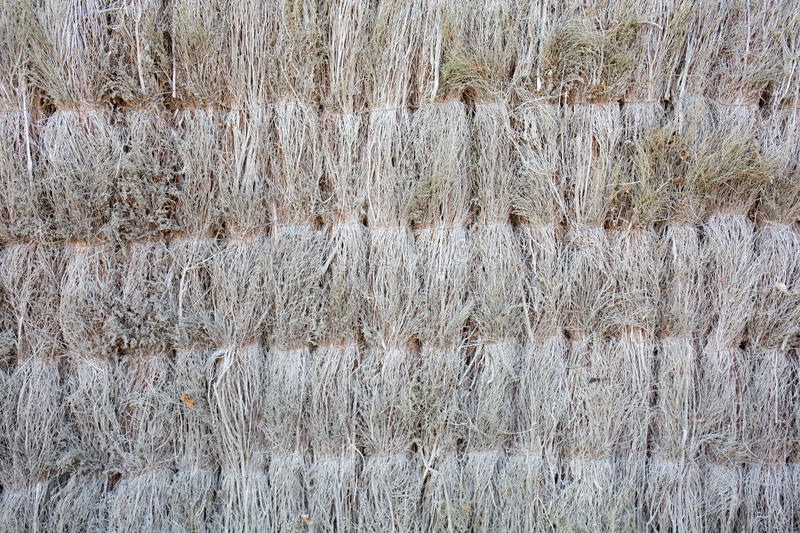 Back side of brown bamboo straw royalty free stock images