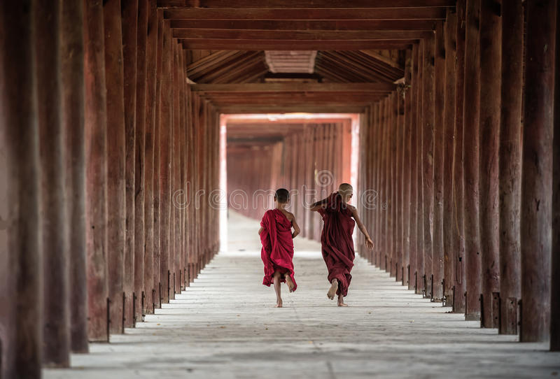 Back side of Buddhist novice are walking in temple. Myanmar stock photography