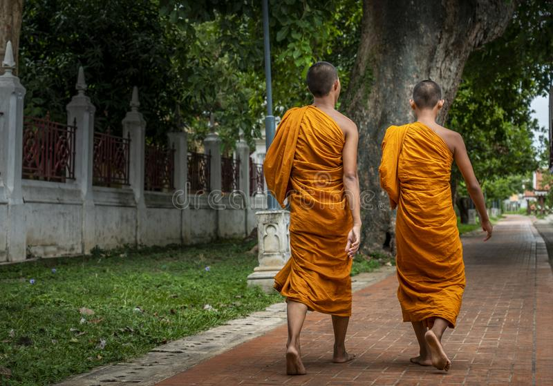 Back side image of two monks royalty free stock image