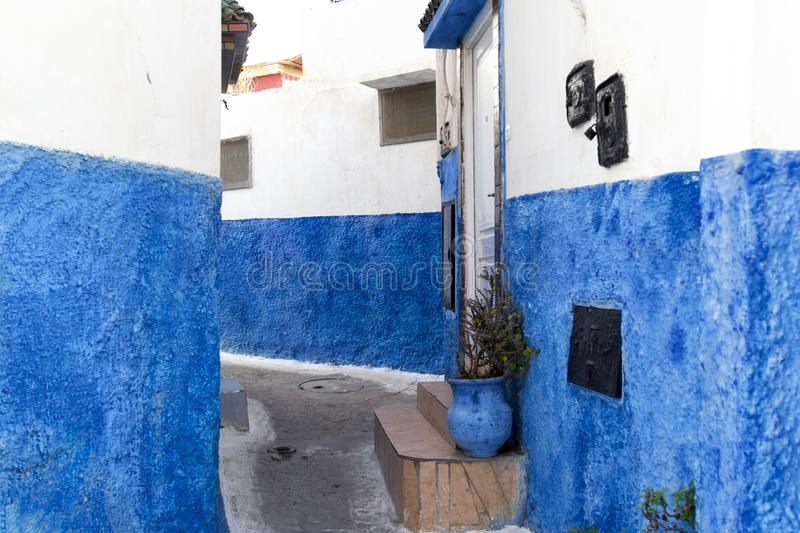 A back street in Meknes, Morocco with blue wall. A back street in Meknes, Morocco with blue jug decorative plant stock photography
