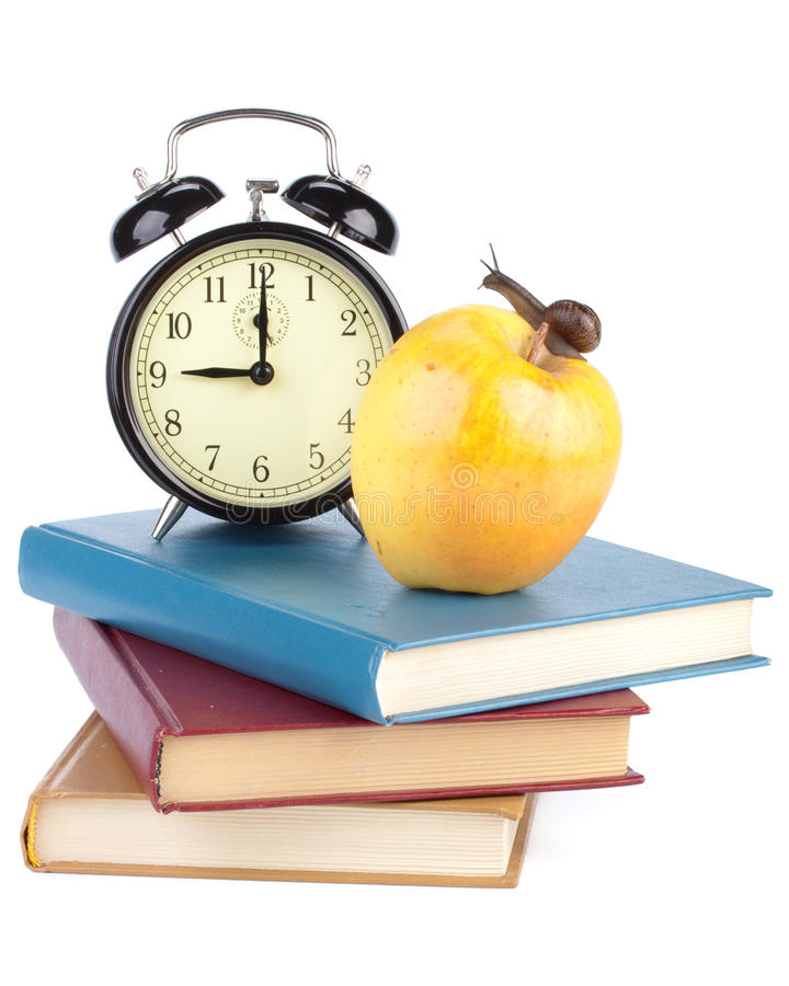 Back to school. The garden snail, alarm clock, books and apple on a white background. Back to school stock image