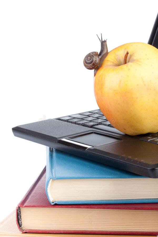 Back to school. The garden snail, notebook, books and apple on a white background. Back to school royalty free stock photography