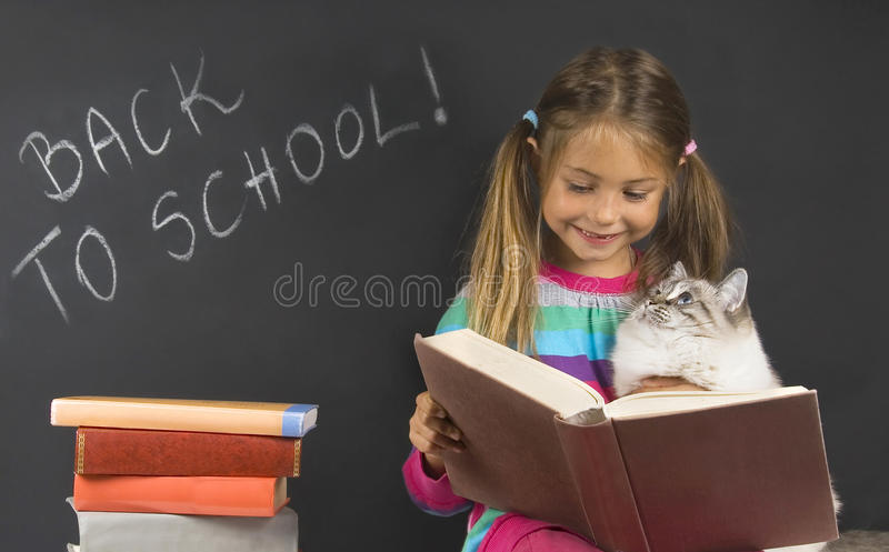 Download Back to school stock photo. Image of beautiful, classroom - 28173796