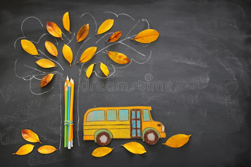 Back to school concept. Top view image of school bus and pencils next to tree sketch with autumn dry leaves over classroom blackbo royalty free stock image