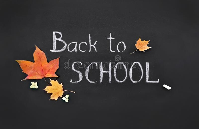 Back to school, template, handwritten in chalk, text on a black board, collage stock images