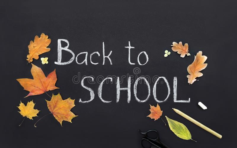 Back to school, template, handwritten in chalk, text on a black board, collage stock photo