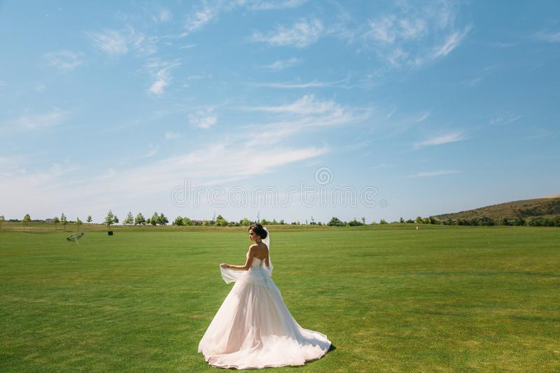 Back view, beautiful bride in luxury fashion white wedding dress with veil on the green golf club glade, wedding day. Amazing full length body portrait of girl stock photos