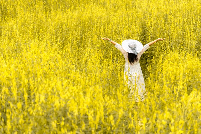 Back view of beauty woman with white wing hat and white dress in the flower meadow. People and Fashion concept. Nature and stock image