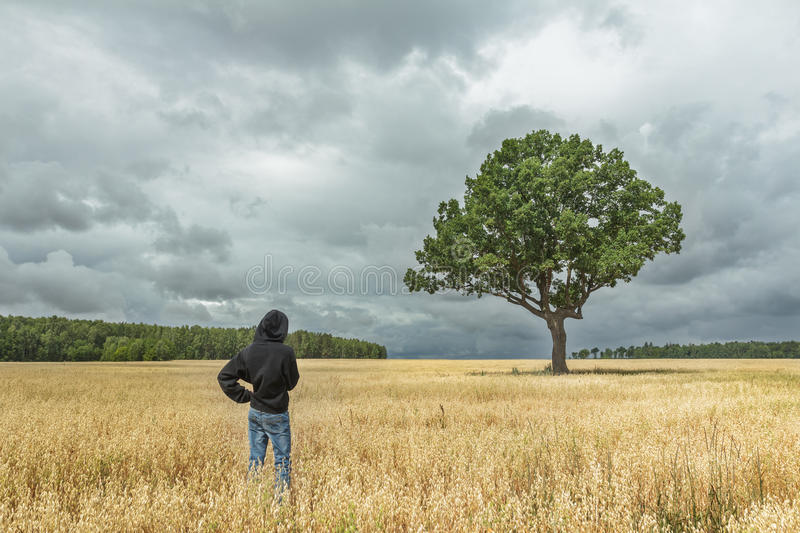 Back view of boy wearing black hooded sweatshirt and blue jeans looking at stunning summer landscape with storm clouds and huge oa. Back view of boy wearing stock image