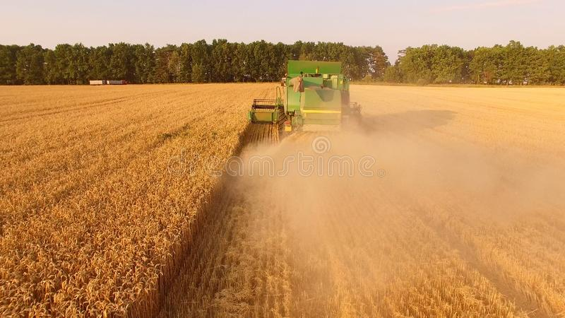 Back view of combine harvester. royalty free stock image