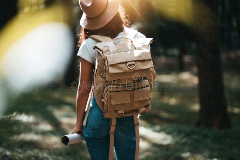 Back view on cute young woman with hat, backpack and location map in hand among trees in forest at sunset royalty free stock image