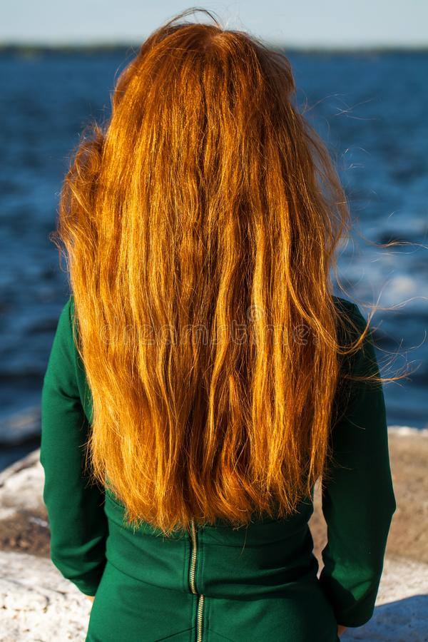 Back view female red-haired girl. Back view female red-haired woman royalty free stock photos