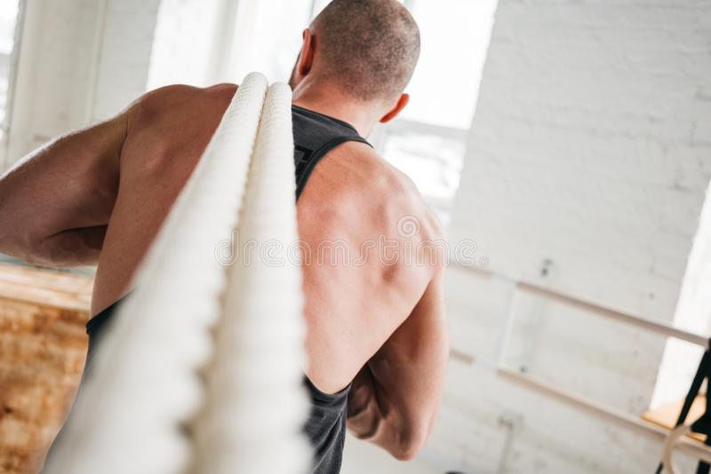Back view on fit man working out with battle ropes at crossfit hall stock photography