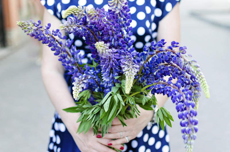 Back view on girl holding a bunch of beautiful lupine flowers. P stock images