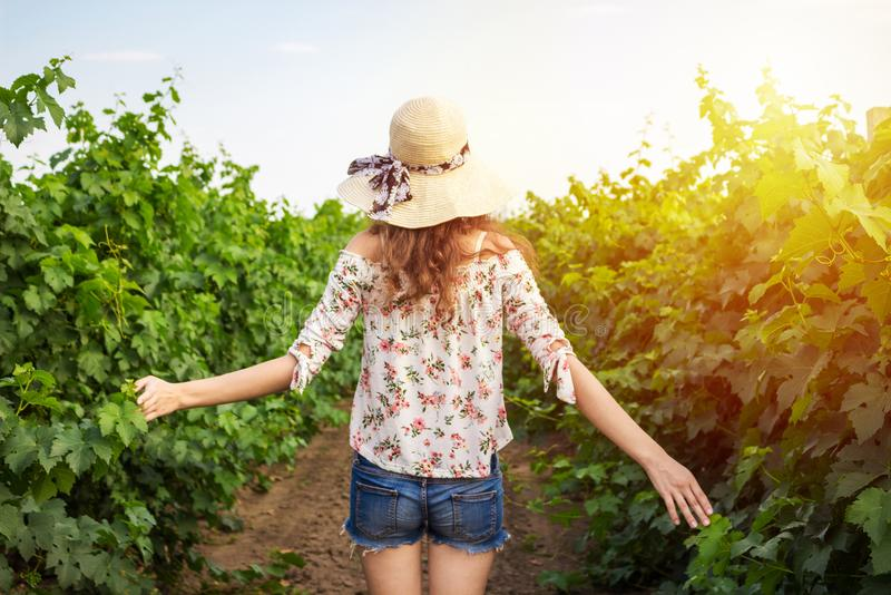 Back view of girl walking through vineyard with arms outstretched. Rear view of woman enjoying in her freedom in nature stock photos