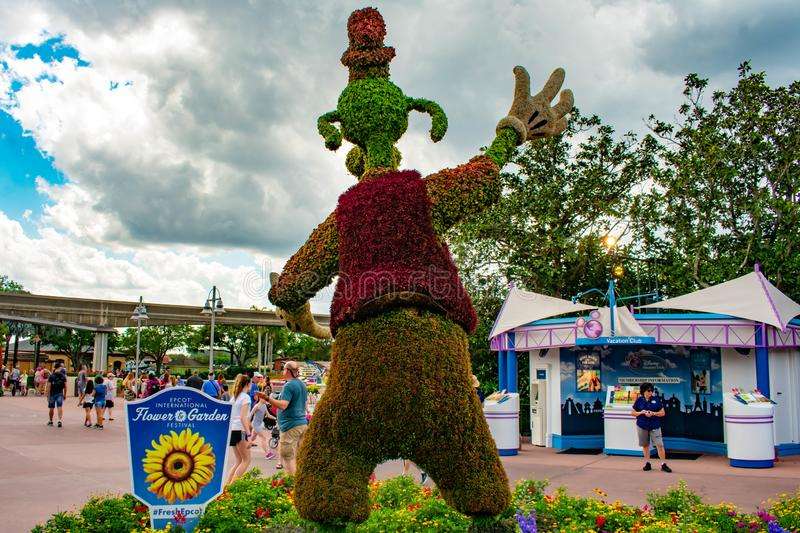 Back view of Goofy topiarie at Epcot in Walt Disney World. royalty free stock photography