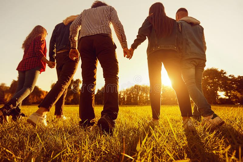 Back view. A group of friends holding hands at sunset in the par. K. Concept of friendship of young people royalty free stock photography