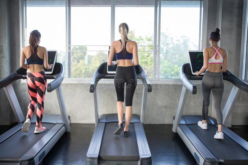 Back view of group of young people running on treadmills in sport gym . three fitness woman runner on running machine in morning royalty free stock photos