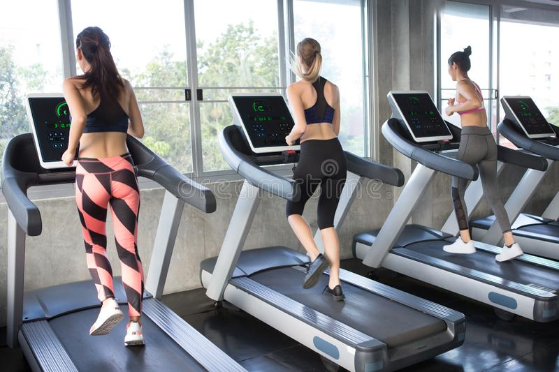 Back view of group of young people running on treadmills in sport gym . three fitness woman runner on running machine in morning stock images