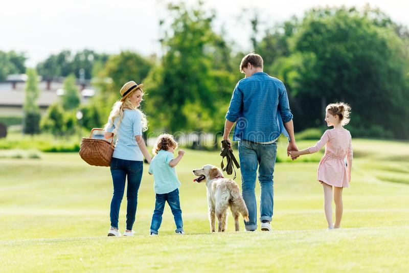 Back view of happy young family with pet walking on green meadow. At park royalty free stock photography
