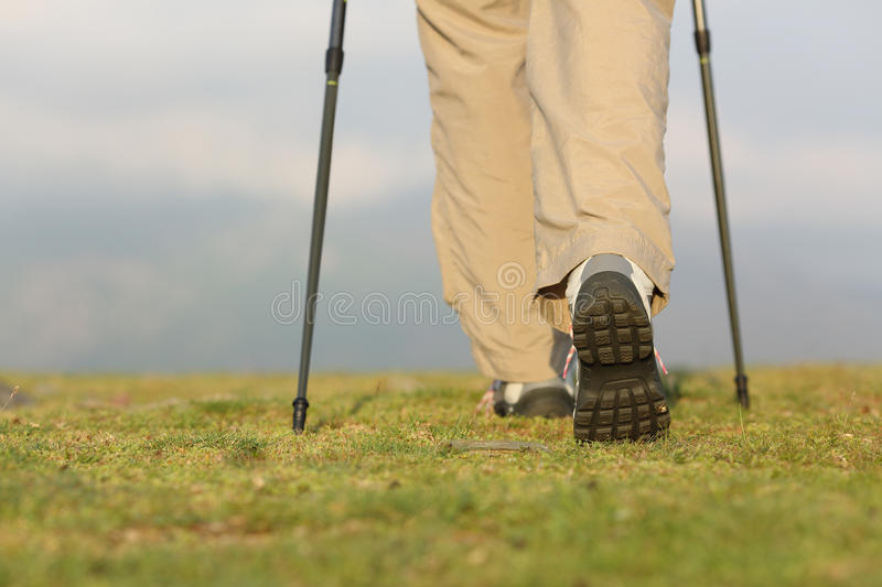 Back view of hiker legs with poles walking on the mountain royalty free stock photos