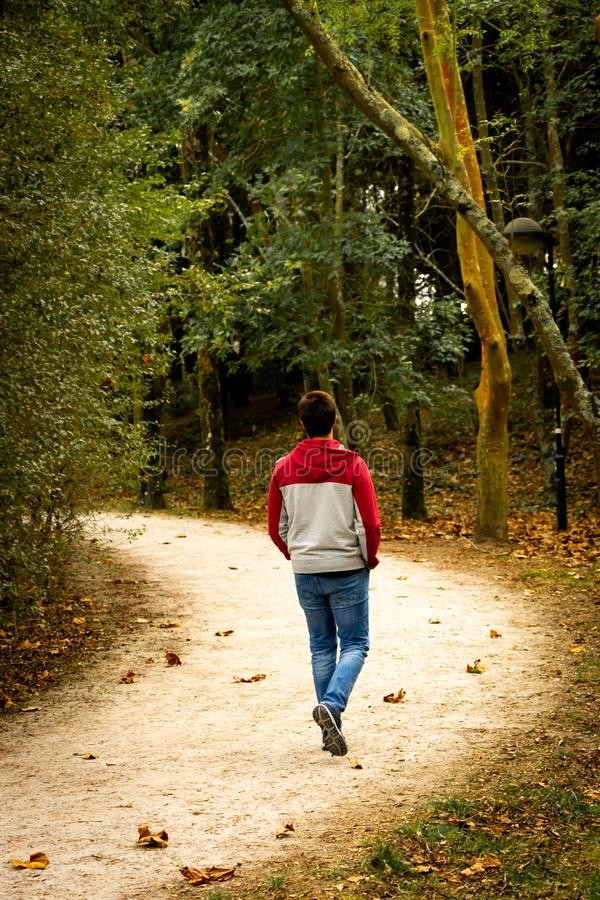 Man Walks in the Park royalty free stock images