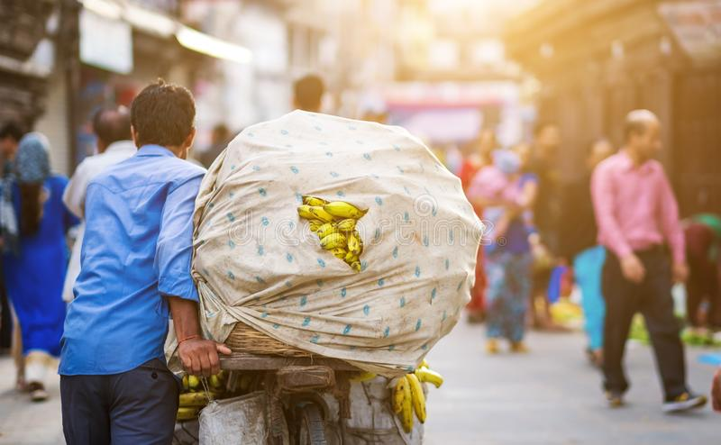 Nepalese man carrying bananas on bike. Back view of Nepalese man carrying a heavy load of bananas on a bike royalty free stock images