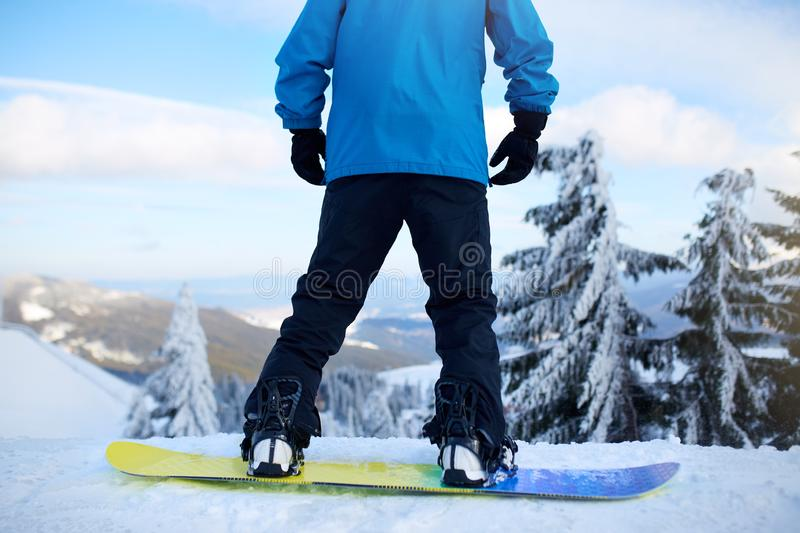 Back view of snowboarder legs on his board before backcountry freeride session in the forest. Man`s feet in boots stock image