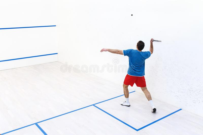 Squash player back view. Back view of squash player hitting a ball in a squash court. Squash player in action. Man playing match of squash. Copy space. Sports royalty free stock images