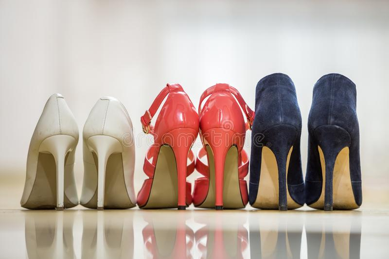 Back view of three pairs of fashionable comfortable high heel leather female shoes isolated on light copy space background. Style royalty free stock images