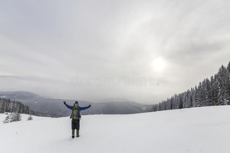 Back view of tourist hiker in warm clothing with backpack standing with raised arms on clearing covered with snow on spruce forest royalty free stock images