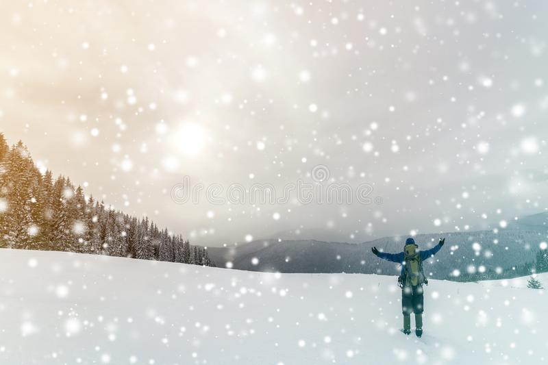 Back view of tourist hiker in warm clothing with backpack standing with raised arms on clearing covered with snow on spruce forest royalty free stock photography