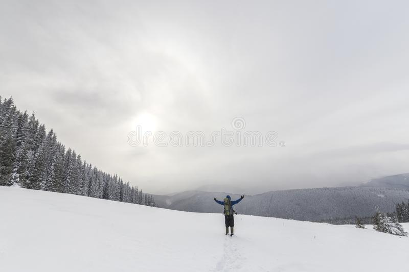 Back view of tourist hiker in warm clothing with backpack standing with raised arms on clearing covered with snow on spruce forest stock photography