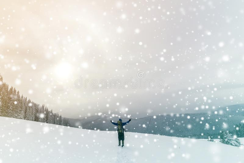 Back view of tourist hiker in warm clothing with backpack standing with raised arms on clearing covered with snow on spruce forest stock photos