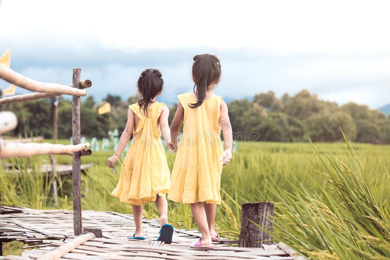 Back view of two little girls holding hand and walking together. In bamboo walkway at the cornfield in vintage color tone royalty free stock photos