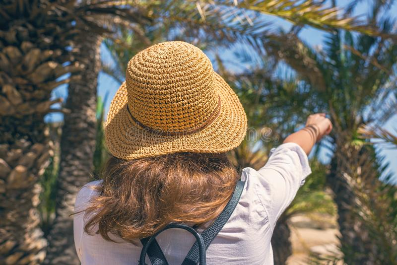 Back view on the Woman in the straw hat walking in the palm forest and shows a finger on the trees. Seychelles islands. stock photos