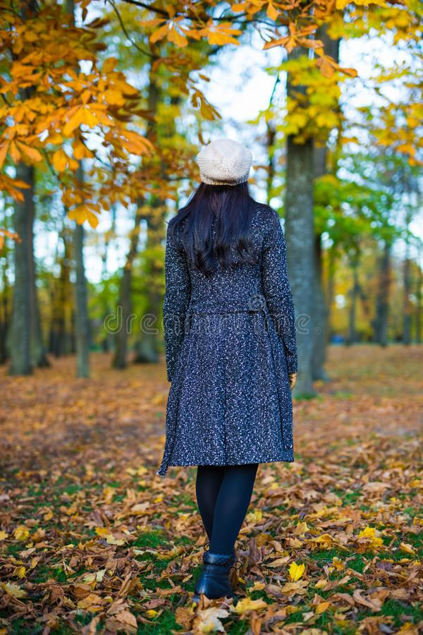 Back view of woman walking in autumn park royalty free stock images