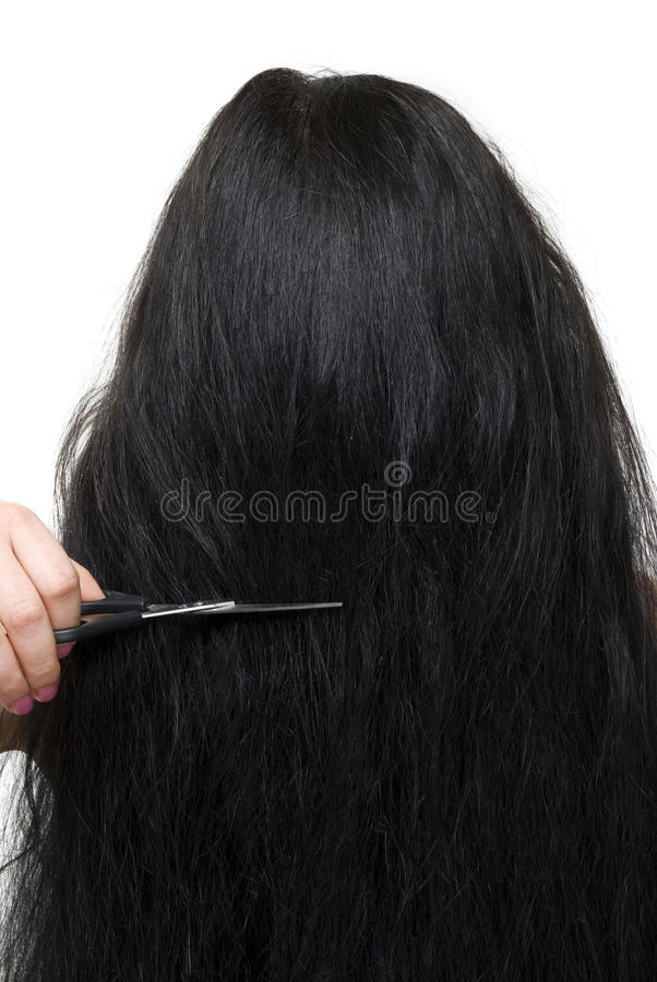 Back Of Woman Long Hair And Scissors Royalty Free Stock Photography