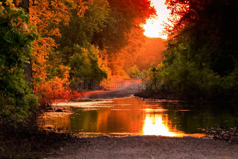 Back Woods Beauty. As the sun starts to drop on the receding flood waters of a back road in Bald Knob Wildlife Refuge located in Bald Knob, Arkansas 2017 stock image