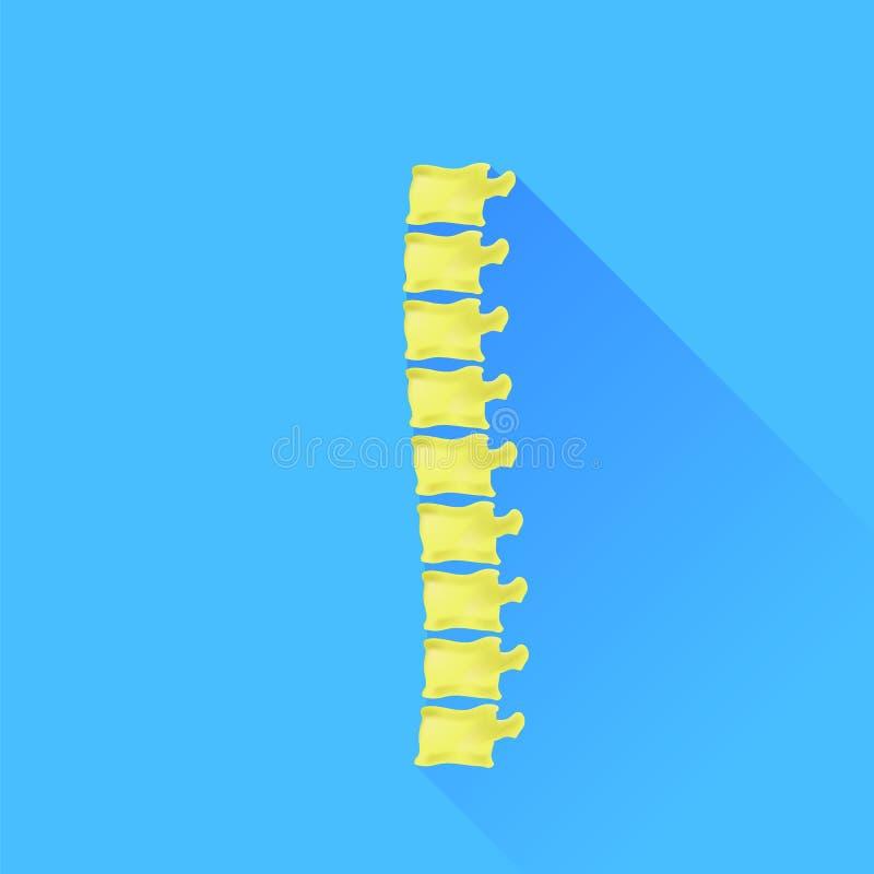 Backbone. Icon Isolated on Blue Background. Long Shadow royalty free illustration