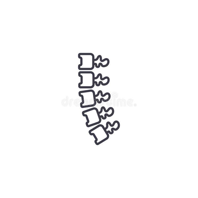 Backbone linear icon concept. Backbone line vector sign, symbol, illustration. Backbone line icon, vector illustration. Backbone linear concept sign stock illustration