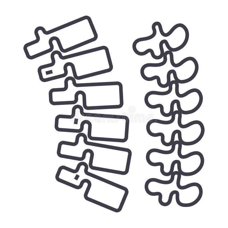 Backbone,spine vector line icon, sign, illustration on background, editable strokes. Backbone,spine vector line icon, sign, illustration on white background stock illustration