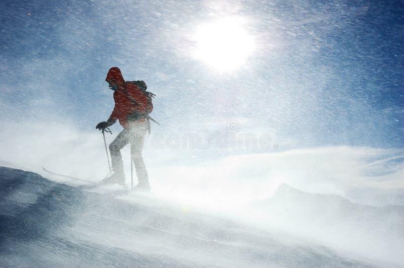 backcountry滑雪者 库存图片