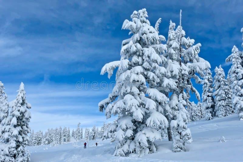 Backcountry που κάνει σκι κοντά στο βουνό συριστήρων στοκ φωτογραφία με δικαίωμα ελεύθερης χρήσης