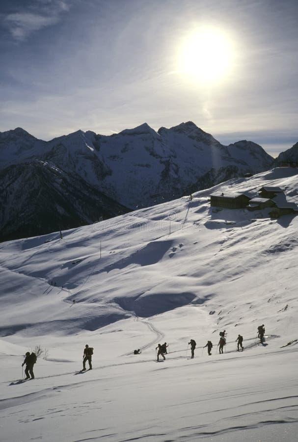 backcountry лыжники стоковая фотография rf