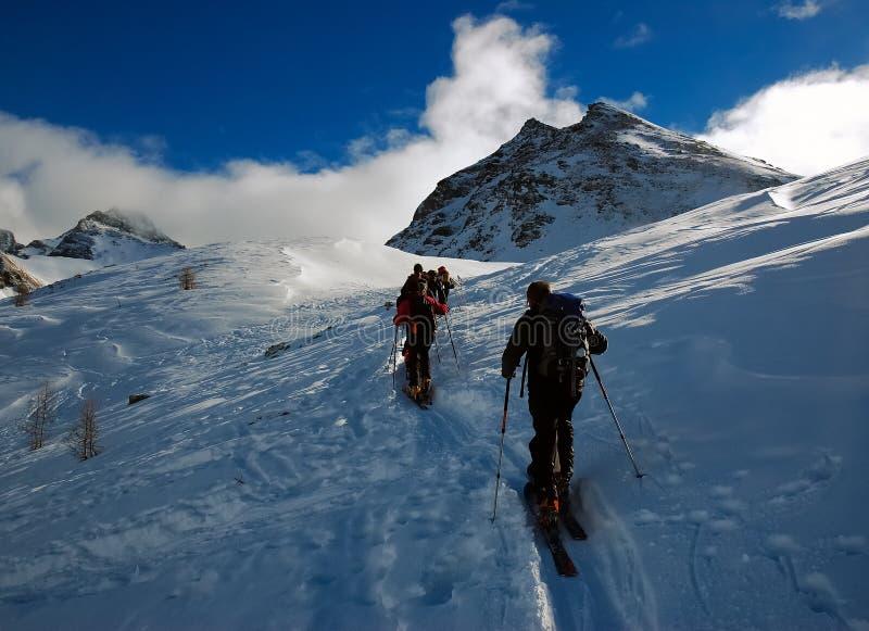 backcountry путешествовать лыжи стоковые фото