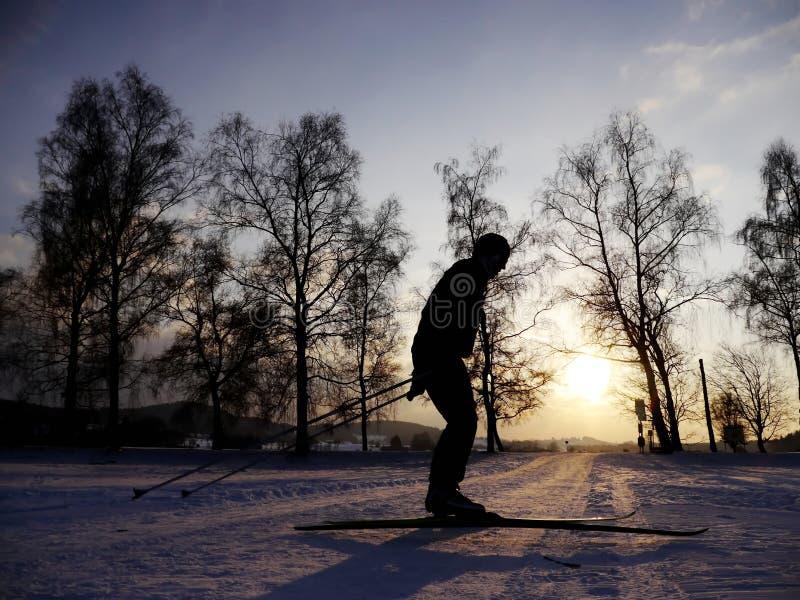 backcountry滑雪者 免版税库存照片