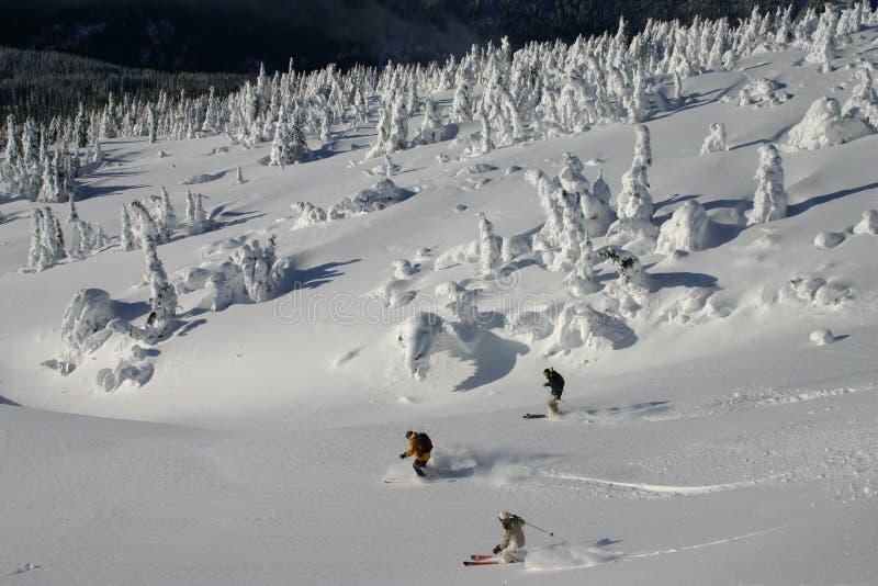Backcountry 6 de esqui foto de stock