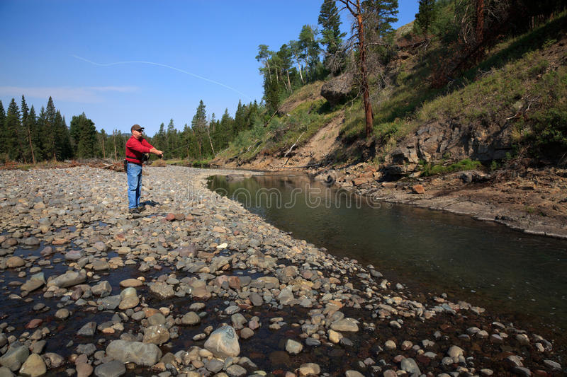 Backcountry Fishing in Yellowstone National Park royalty free stock image